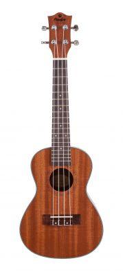 Instruments à cordes JM FOREST BC2